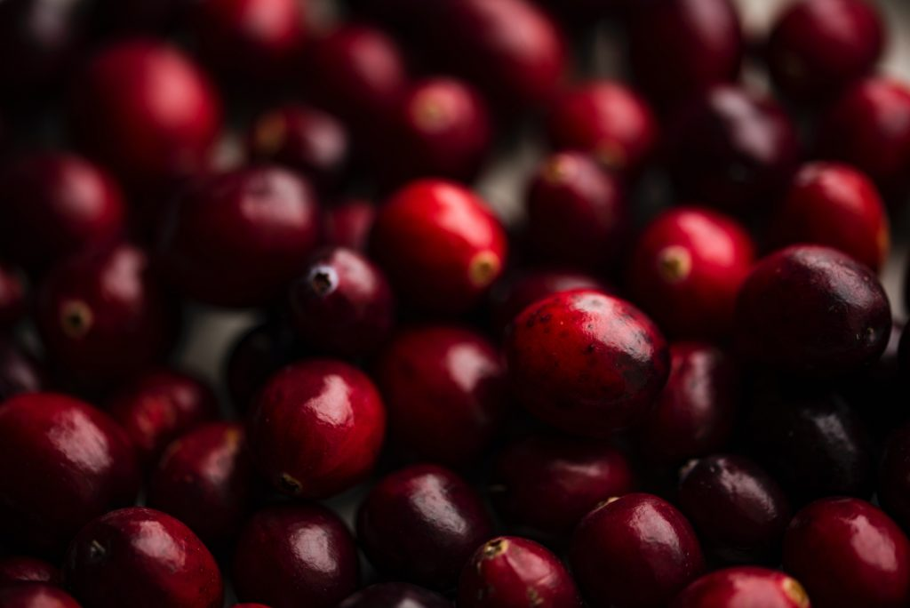 cranberry Most heathy fruits | Best Fruits | Most Nutritious Fruits