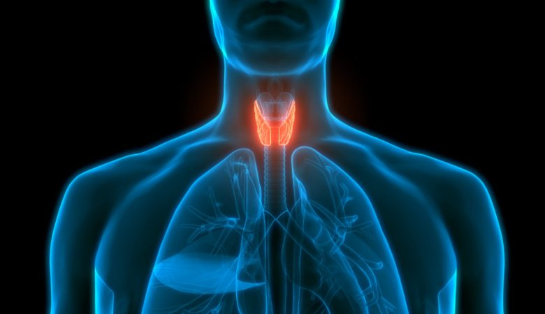 stimulate the thyroid naturally